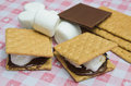 Yummy s mores with marshmallow chocolatte and graham cracker Stock Image