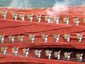 Yunnan Minority Woman Royalty Free Stock Photo
