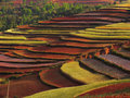 Yunnan red soil dry Stock Photography