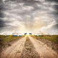 Yurt nomadic village with yurts and horses at dramatic overcast sky with sun in steppe in asia Stock Image
