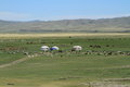 Yurt Village Mongolia Royalty Free Stock Photos