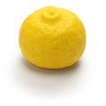 Yuzu citrus fruit, japanese cuisine condiment Royalty Free Stock Photo