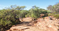 Z-Bend Bushland: Kalbarri Royalty Free Stock Photo