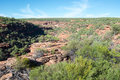 Z bend red sandstone cliffs with lush native flora at the gorge in kalbarri national park under a clear blue sky Royalty Free Stock Photos