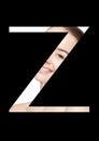 Z letter beauty makeup girl creative fashion font