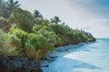 Zanzibar Coastline