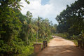 Zanzibar road on surrounded of plam trees Royalty Free Stock Photography