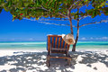 Zanzibar tropical and beach chair at the beach tree white sand blue water Stock Photos