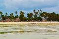 Zanzibar view-beach,ocean,sky and beach houses Royalty Free Stock Photo
