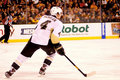 Zbynek michalek pittsburgh penguins Photo libre de droits