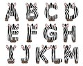 Zebra alphabet set from A to M Stock Images