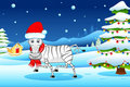 Zebra in Christmas mood Royalty Free Stock Images