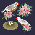 Zebra finches birds and flowers set