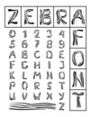 Zebra Font Stock Photos