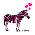 Zebra and hearts in love with vector illustration Stock Photos