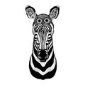 Zebra Horse wearing aviator hat Motorcycle hat with glasses for biker Illustration for motorcycle or aviator t-shirt