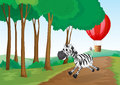 A zebra and a hot air balloon at the forest illustrationn of Stock Image