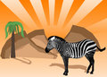 Zebra illustration Stock Photos