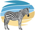 Zebra illustration plains grant s equus quagga boehmi Stock Photo