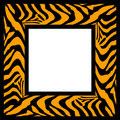 Zebra pattern frame Royalty Free Stock Photo