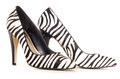 Zebra pattern high heel shoes cut out studio Royalty Free Stock Images