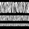 Zebra print seamless background border frame pattern. Black and Royalty Free Stock Photo