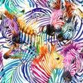 Zebra seamless pattern. tropical nature watercolor illustration. Royalty Free Stock Photo