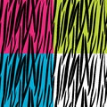 Zebra skin pattern Stock Photo