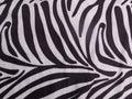 Zebra skin texture Royalty Free Stock Photo