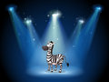 A zebra at the stage with spotlights illustration of Royalty Free Stock Images