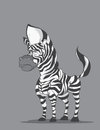 Zebra stylish on gray background Stock Photo