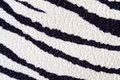 Zebra texture Stock Photography
