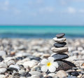 Zen balanced stones stack with plumeria flower meditation spa relaxation background frangipani close up on sea beach Royalty Free Stock Photos
