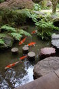 Zen garden, Koi pond Royalty Free Stock Photo