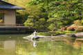 Zen garden scenic japanese with pond and small stone lantern by summer Stock Image