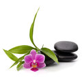 Zen pebbles balance spa and healthcare concept Stock Image