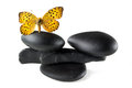 Zen stones with butterfly balance concept Royalty Free Stock Images