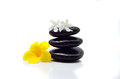 Zen stones with flowers on white background Stock Photos