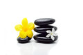 Zen stones with flowers on white background Royalty Free Stock Photos