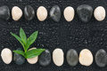 Zen stones and leaves with water drops space for text Stock Photo