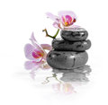Zen stones and orchid with reflection in water Stock Image