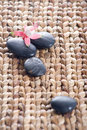 Zen stones with pink flowers Royalty Free Stock Photo