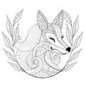 Zentangle Fox face in monochrome doodle style. Hand drawn Wild a Royalty Free Stock Photo