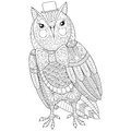 Zentangle Owl painting for adult anti stress coloring page