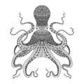 Zentangle stylized black Octopus. Hand Drawn illustration