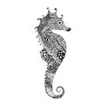 Zentangle stylized black Sea Horse. Hand Drawn