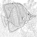 Black and white stylized drawing ornamental fish
