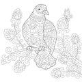 Zentangle stylized dove bird