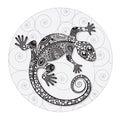 Zentangle stylized drawing of a lizard.