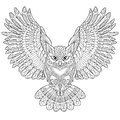 Zentangle stylized eagle owl cartoon isolated on white background hand drawn sketch for adult antistress coloring page t shirt Royalty Free Stock Images